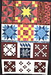 Hhs_afghan_quilt_top_sep_2006