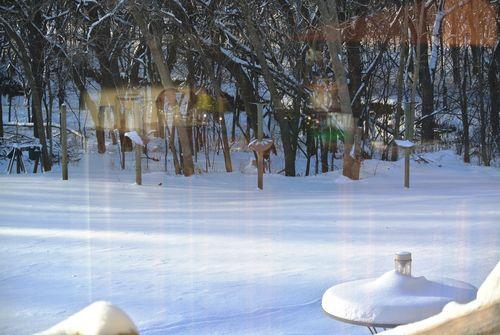 2014Feb10 Second Snow