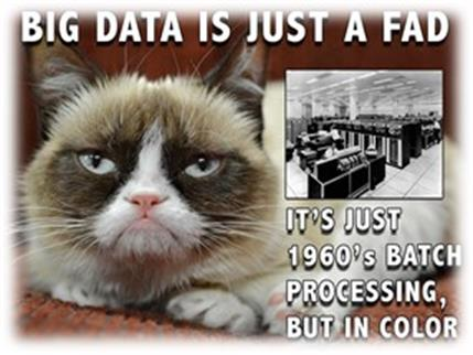 Big Data is a Fad