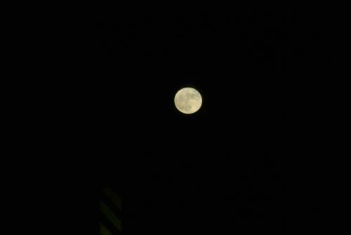 Super Moon 2016Nov14 1815CST