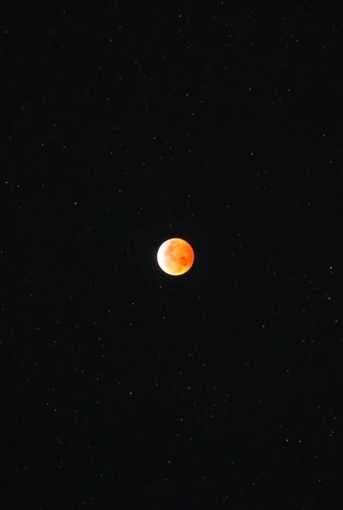 Moon-eclipse-1-21-2019-Karl-Diuefenderfer-Quakertown-PA-e1548069728439
