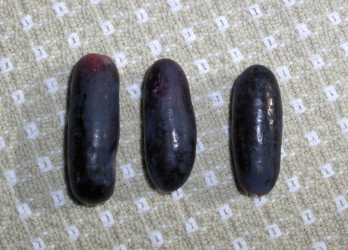 2020Jan31 Detail of Black Grapes from Peru